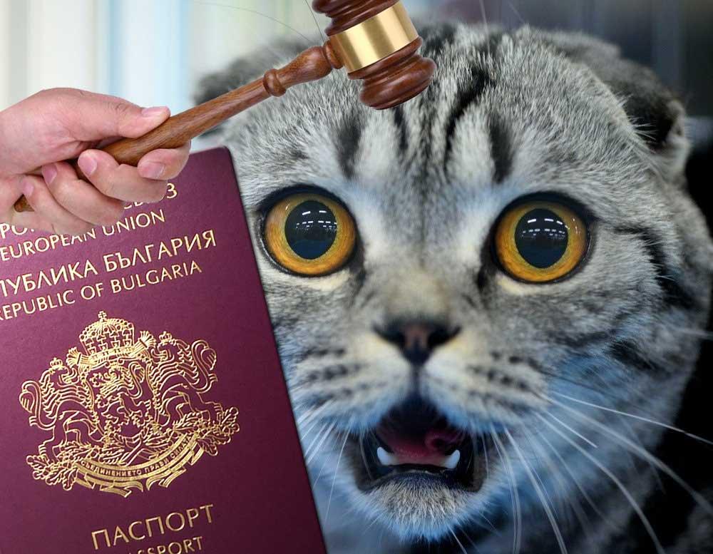 scared authorities in Bulgaria