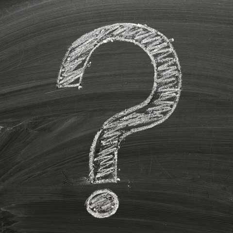 citizenship question