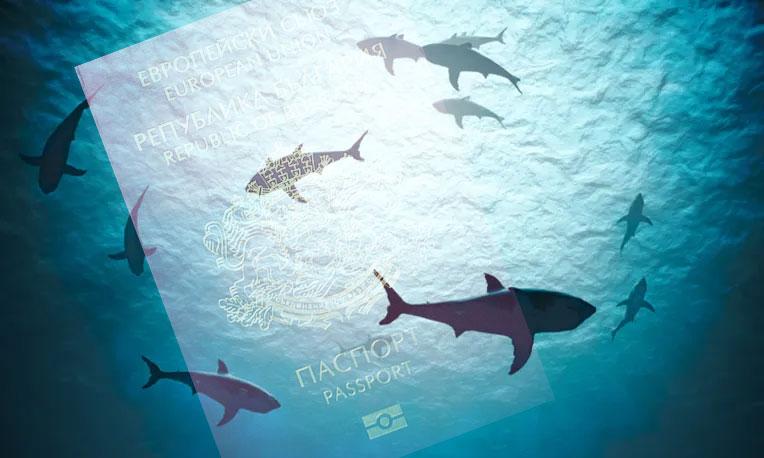 hungry sharks swimming around Bulgarian passport